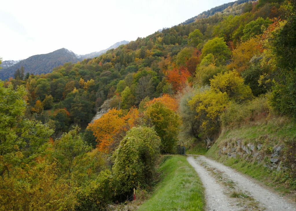 couleurs d'automne au val des dix