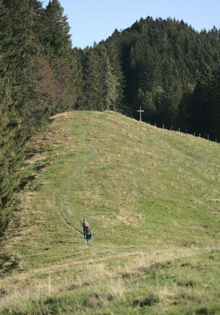 randonnée willerzell