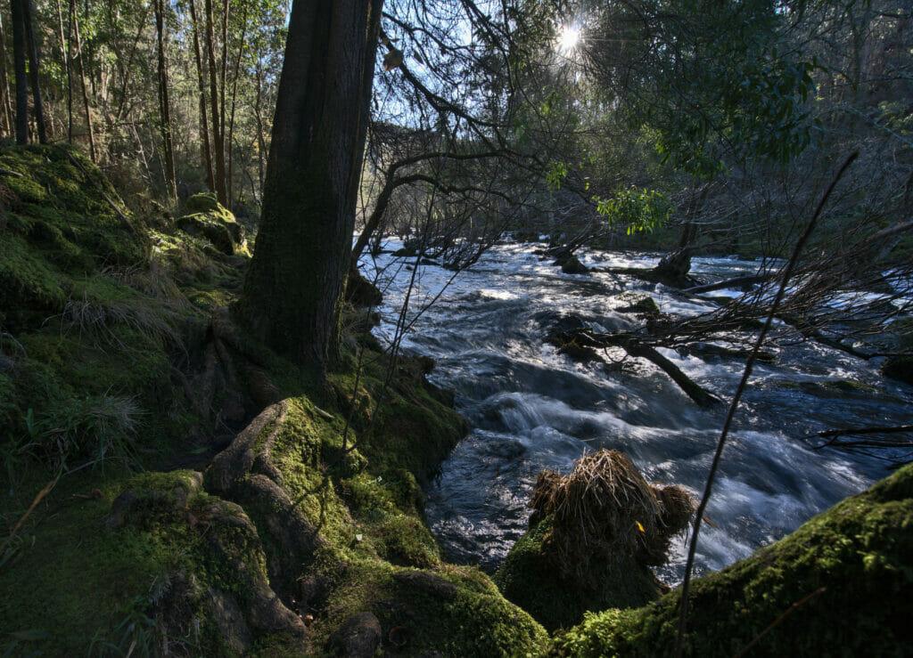 la nature en Galice