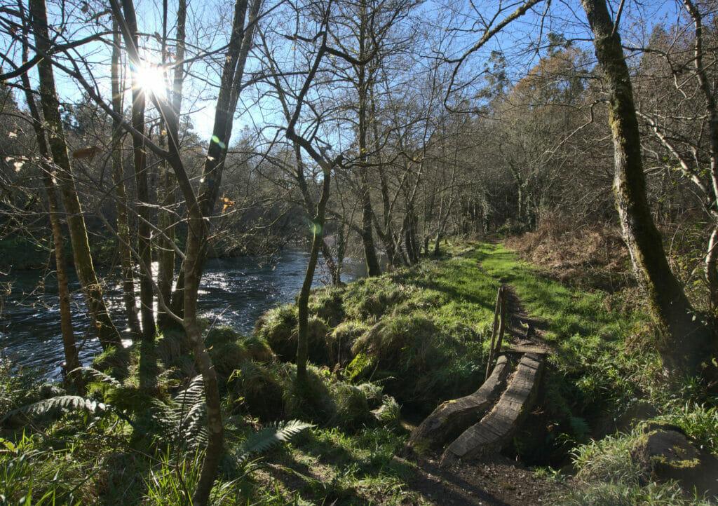 le rio verdugo en Galice