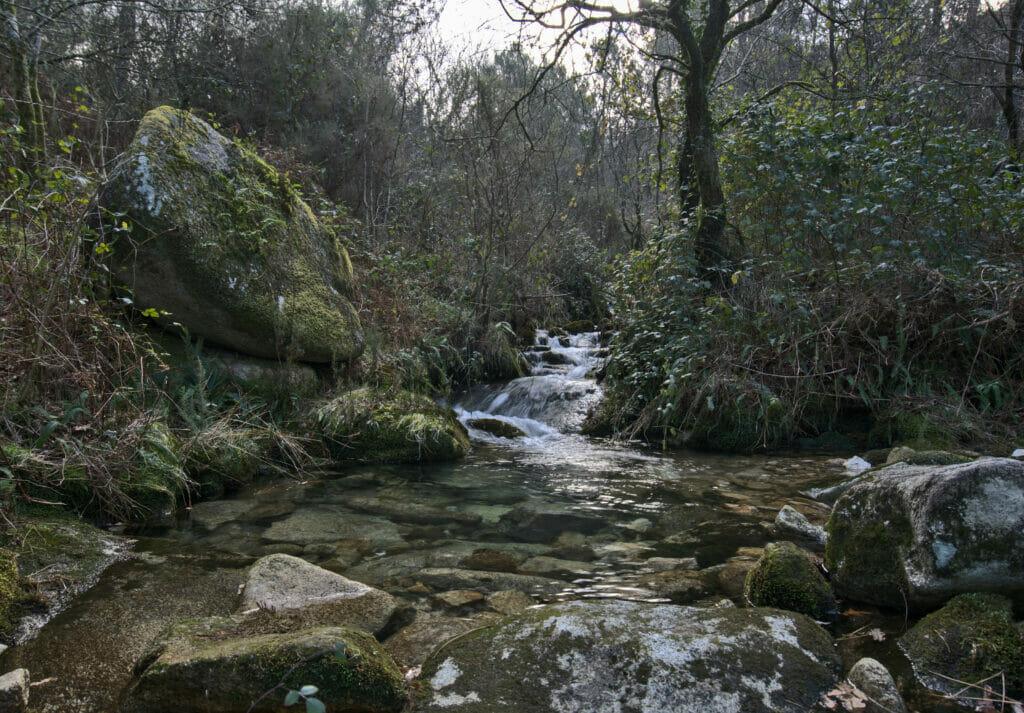 nature de Galice