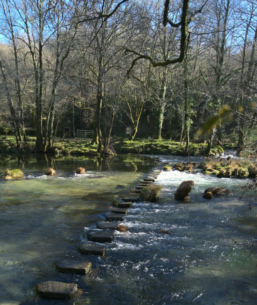 pierres pour traverser le rio verdugo