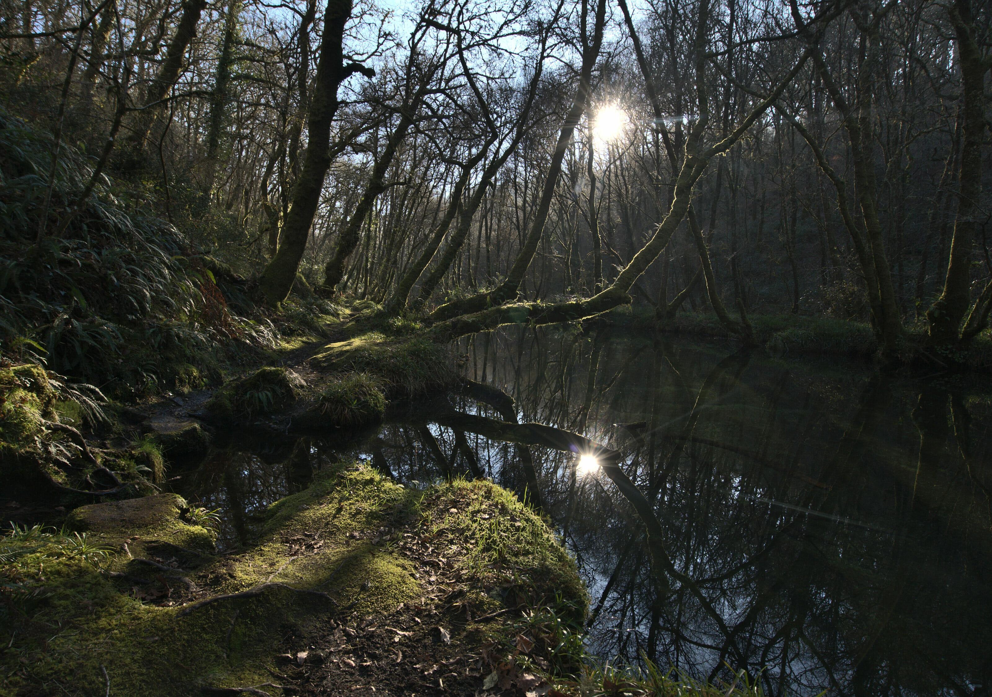 rio Barragan Galicia