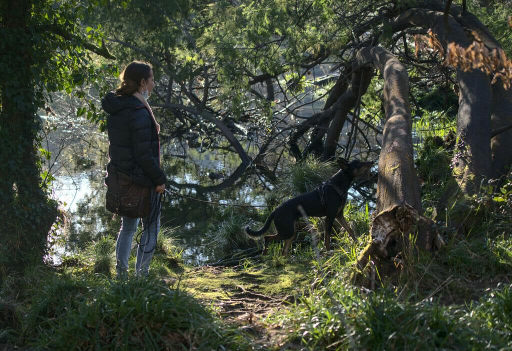 nature galice rio verdugo