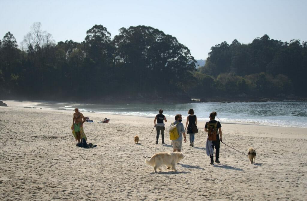 plage de Lapaman en Galice avec les dogs
