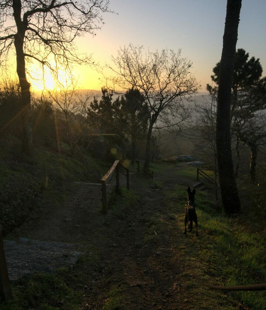lever de soleil lobeira
