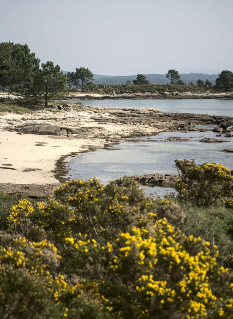 parc national arousa