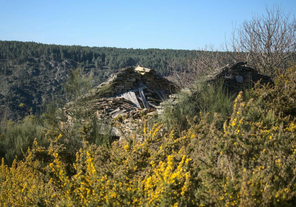 maison abandonnée ribeira sacra