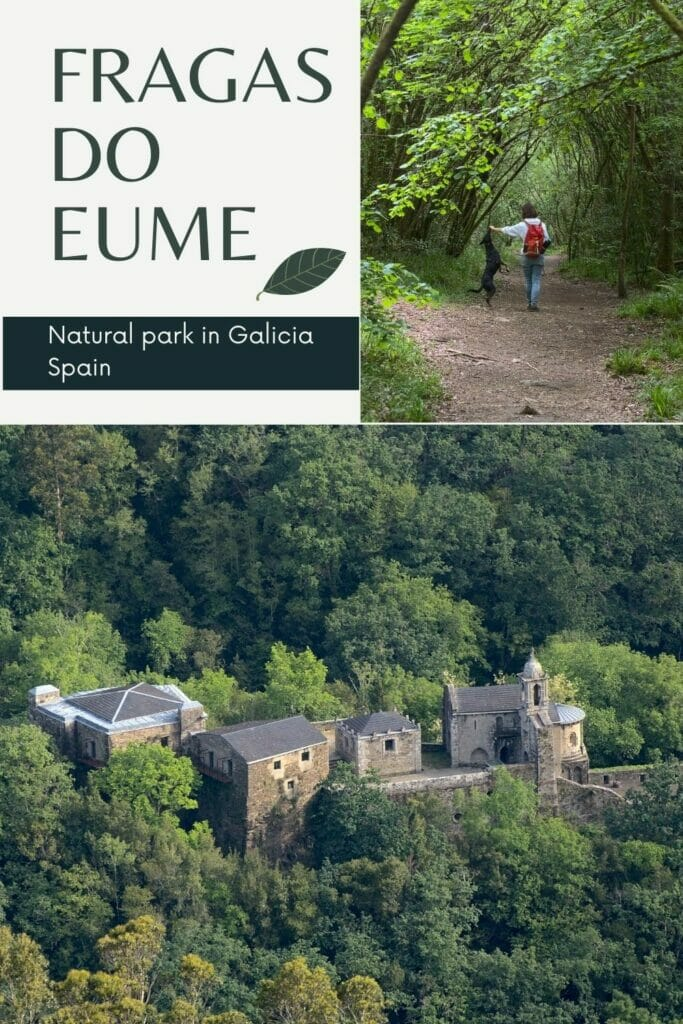the natural park of Fragas do Eume in Galicia