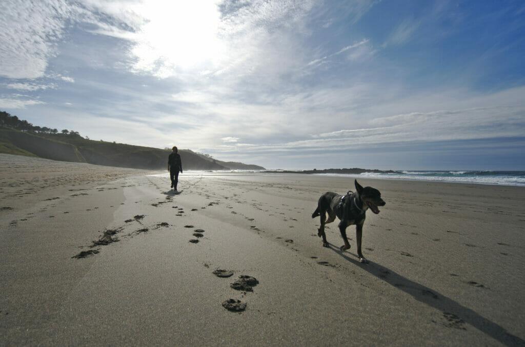 playa frexulfe