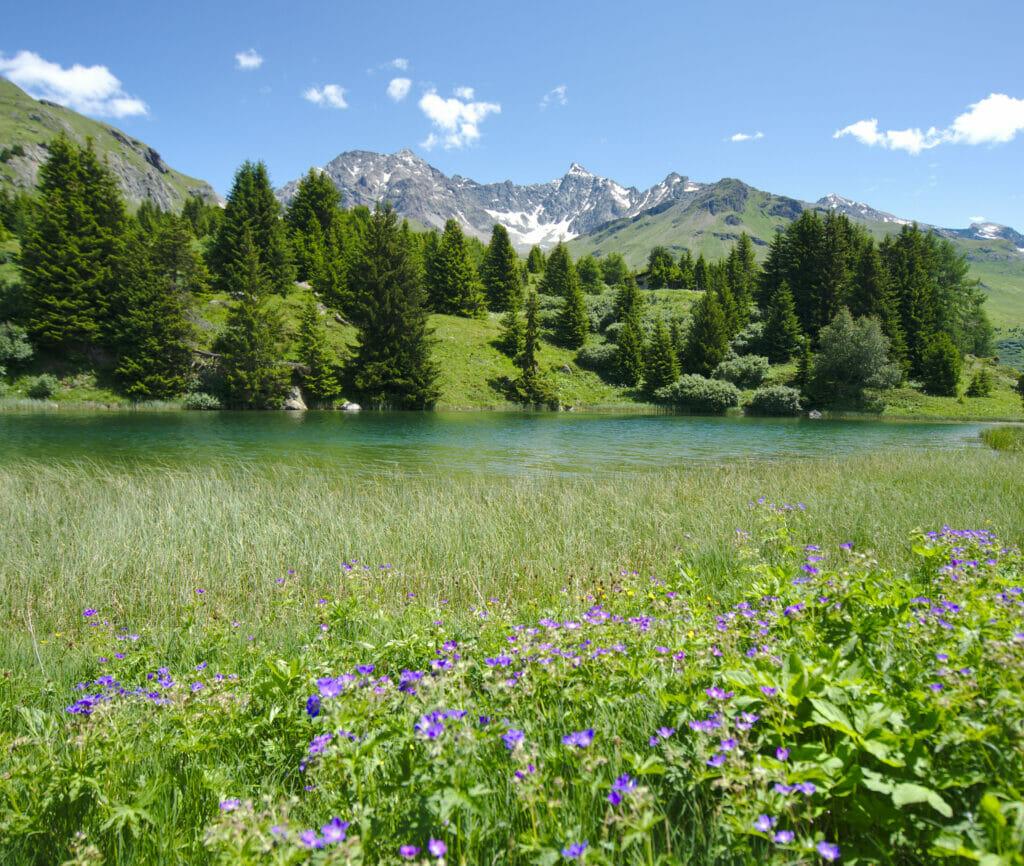 un des lacs à l'alp Flix