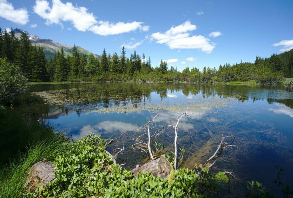 lac noir alp flix